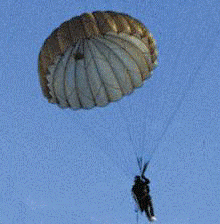 T-10 Reserve Green Military Parachute Canopy